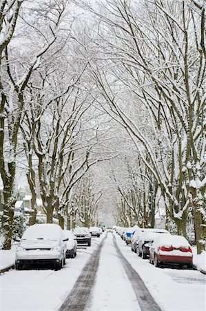Winter, West Point Grey, Vancouver, British Columbia, Canada Stock Photo - Premium Royalty-Free, Code: 600-03615885