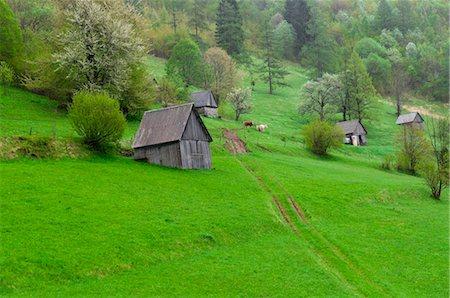 Soca Valley, Slovenia Stock Photo - Premium Royalty-Free, Code: 600-03659226