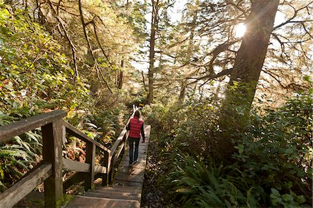 Woman Hiking in Rainforest, Florencia Bay, Tofino, Vancouver Island, British Columbia, Canada Stock Photo - Premium Royalty-Free, Code: 600-03686095