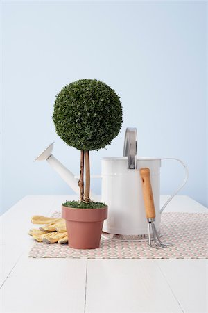 Potted Plant and Gardening Utensils Stock Photo - Premium Royalty-Free, Code: 600-03738801