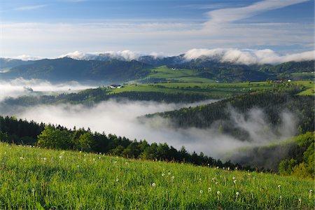 Morning Mist over Landscape, Voralpenblick, Waidhofen an der Ybbs, Mostviertel, Lower Austria, Austria Stock Photo - Premium Royalty-Free, Code: 600-03738933