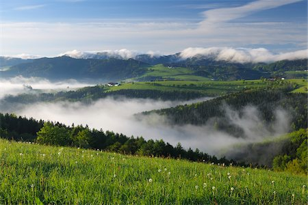 Morning Mist over Landscape, Voralpenblick, Waidhofen an der Ybbs, Mostviertel, Lower Austria, Austria Stock Photo - Premium Royalty-Free, Code: 600-03738933