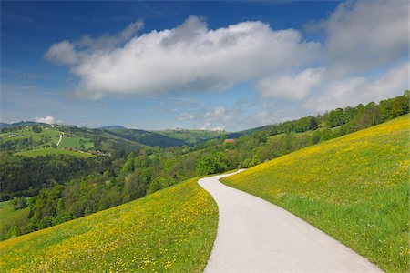 Meadow with Road, Mostviertel, Lower Austria, Austria Stock Photo - Premium Royalty-Free, Code: 600-03738949