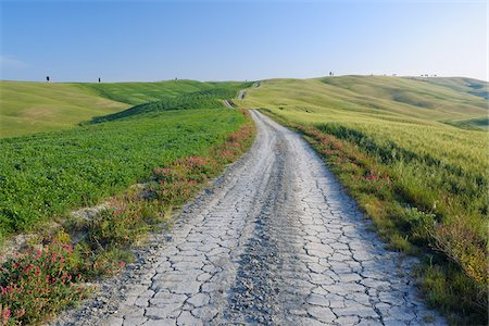 Dirt Road through Fields and Hills, Val d'Orcia, San Quirico d'Orcia, Siena Province, Tuscany, Italy Stock Photo - Premium Royalty-Free, Code: 600-03787196