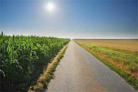 roads and sun - Country Road between Fields, Unterpleichfeld, Franconia, Bavaria, Germany Stock Photo - Premium Royalty-Free, Code: 600-03799529