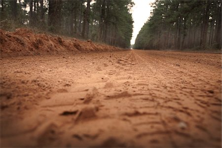 dirt - Close-up of Dirt Road, Sam Houston National Forest, Texas, USA Stock Photo - Premium Royalty-Free, Code: 600-03849054