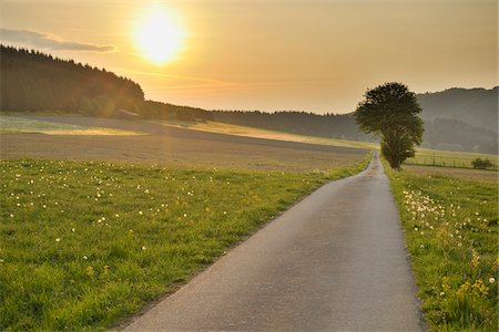 Wissinghausen, Medebach, Hochsauerland, North Rhine-Westphalia, Germany Stock Photo - Premium Royalty-Free, Code: 600-03906972