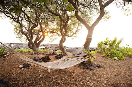 Hammock by the ocean on the Big Island of Hawaii Stock Photo - Premium Royalty-Free, Code: 614-05955565