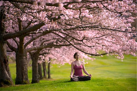 Woman in lotus position under cherry tree Stock Photo - Premium Royalty-Free, Code: 614-06168924