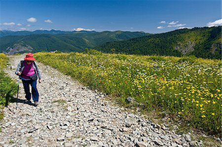 Female hiker on mountain path, Silver Star Peak, Cascade Range, Washington, USA Stock Photo - Premium Royalty-Free, Code: 614-06169045