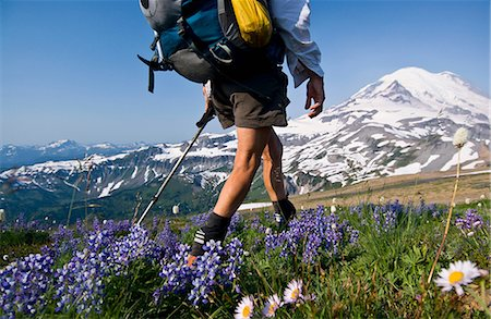Female backpacker on Cowlitz Divide, Mount Rainier National Park, Washington, USA Stock Photo - Premium Royalty-Free, Code: 614-06169040
