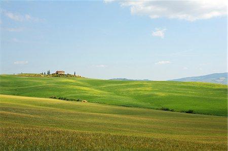 Rolling landscape, Tuscany, Italy Stock Photo - Premium Royalty-Free, Code: 614-06311899