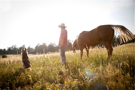 Man in a field with horse and dog Stock Photo - Premium Royalty-Free, Code: 614-06402852