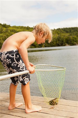 Boy looking at frog caught in net Stock Photo - Premium Royalty-Free, Code: 614-06402887