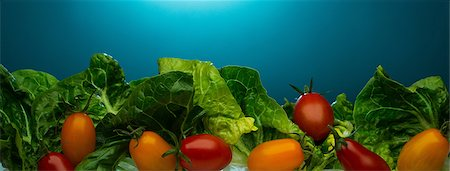 Close up of tomatoes and lettuce Stock Photo - Premium Royalty-Free, Code: 614-06624615