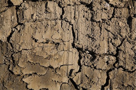 dirt - Close up of cracked dry mud Stock Photo - Premium Royalty-Free, Code: 614-06625198
