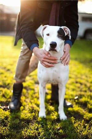dogs in nature - Man holding dog in park Stock Photo - Premium Royalty-Free, Code: 614-06625424