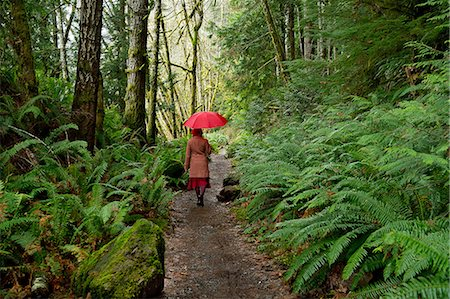 Woman with umbrella walking in forest Stock Photo - Premium Royalty-Free, Code: 614-06719899