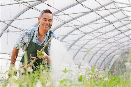 Mature man watering plants in garden centre Stock Photo - Premium Royalty-Free, Code: 614-06896294