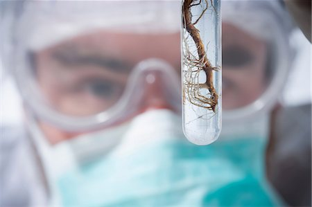 Scientist holding test tube with roots, close up Stock Photo - Premium Royalty-Free, Code: 614-06896631
