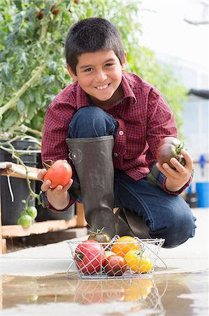 farm and boys - Boy crouching holding ripe tomatoes Stock Photo - Premium Royalty-Free, Code: 614-06974035