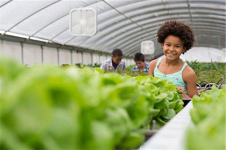 Children tending plants in nursery Stock Photo - Premium Royalty-Free, Code: 614-06973991