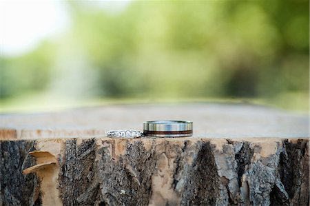 Two silver wedding rings displayed on tree trunk Stock Photo - Premium Royalty-Free, Code: 614-07031807