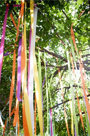 Tree with tied color ribbons Stock Photo - Premium Royalty-Free, Code: 614-07031838