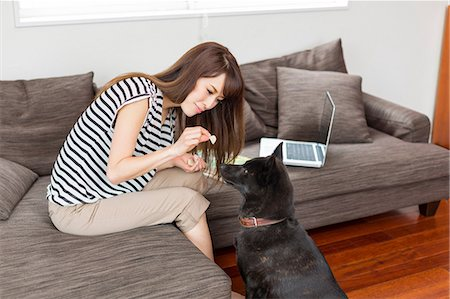 Woman feeding dog in living room Stock Photo - Premium Royalty-Free, Code: 614-07145870