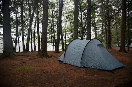 forest - Lone tent in clearing, Bath, Maine, USA Stock Photo - Premium Royalty-Free, Code: 614-07146403