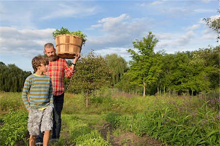 Mature man and son with basket of leaves on herb farm Stock Photo - Premium Royalty-Free, Code: 614-07194755