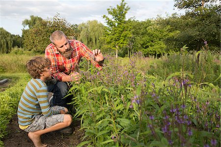 Mature man and son looking at plants on herb farm Stock Photo - Premium Royalty-Free, Code: 614-07194756