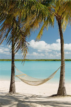 Hammock between palm trees, Providenciales, Turks and Caicos Islands, Caribbean Stock Photo - Premium Royalty-Free, Code: 614-07453281