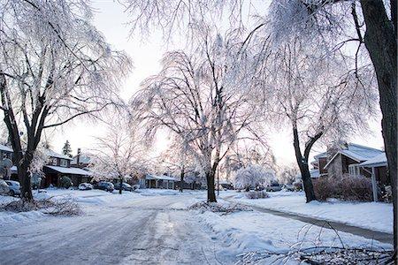 street - Ice storm, Toronto, Ontario, Canada Stock Photo - Premium Royalty-Free, Code: 614-07487097