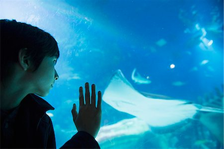 discovery - Boy admiring sea life in aquarium Stock Photo - Premium Royalty-Free, Code: 614-07587540