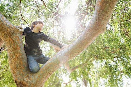 Boy hiding in sunlit tree gazing into distance Stock Photo - Premium Royalty-Free, Code: 614-07587696