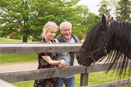 Mature couple feeding horse through fence Stock Photo - Premium Royalty-Free, Code: 614-07708219