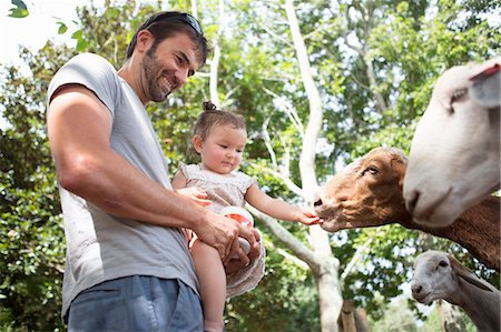 Father and baby daughter feeding goats at zoo Stock Photo - Premium Royalty-Free, Code: 614-07805858