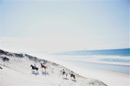 Horse riding, Pakiri Beach, Auckland, New Zealand Stock Photo - Premium Royalty-Free, Code: 614-07911669