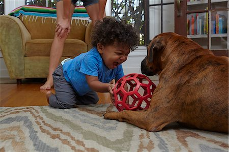 Male toddler playing with dog on sitting room floor Stock Photo - Premium Royalty-Free, Code: 614-07911890