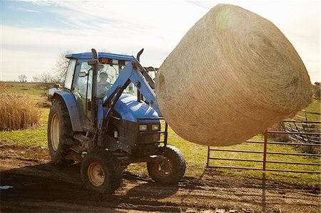 farm and boys - Boy farmer driving tractor moving hay stack on dairy farm Stock Photo - Premium Royalty-Free, Code: 614-08065936