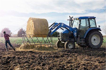 farming (raising livestock) - Boy farmer removing netting from hay stack in dairy farm field Stock Photo - Premium Royalty-Free, Code: 614-08065938