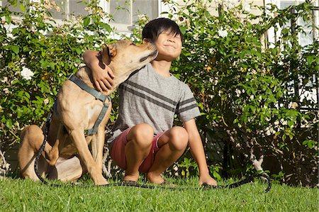 dog lick - Dog licking boys face in garden Stock Photo - Premium Royalty-Free, Code: 614-08270473