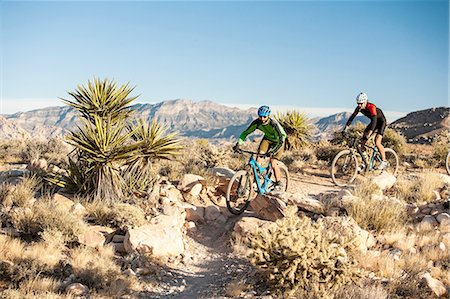 Mountain bikers, Las Vegas, Nevada, USA Stock Photo - Premium Royalty-Free, Code: 614-08307625