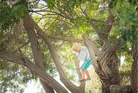 Young boy climbing tree Stock Photo - Premium Royalty-Free, Code: 614-08307620
