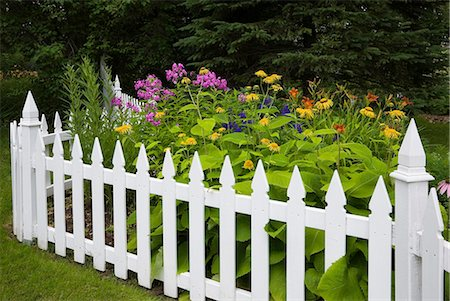 quaint - Orange, yellow and purple flowers surrounded by white picket fence Stock Photo - Premium Royalty-Free, Code: 614-08383637