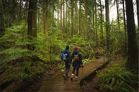 forest - Couple in forest on wooden walkway, Lynn Canyon Park, North Vancouver, British Columbia, Canada Stock Photo - Premium Royalty-Free, Code: 614-08641718