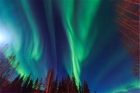 dreamy - Aurora borealis, Northern Lights above Hot Springs Road, near Chena Resort, near Fairbanks, Alaska Stock Photo - Premium Royalty-Free, Code: 614-08641766