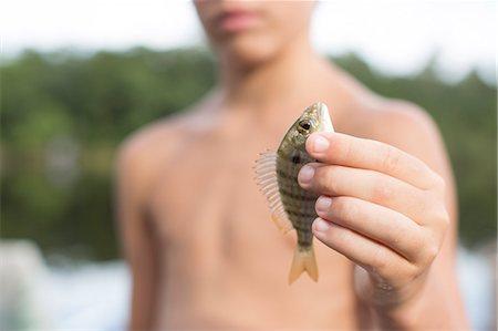 preteen boy shirtless - Portrait of boy holding up pinfish, Shalimar, Florida, USA Stock Photo - Premium Royalty-Free, Code: 614-08876320