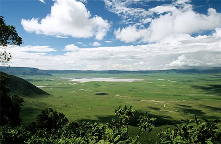 serengeti national park - Landscape of ngorongoro crater Stock Photo - Premium Royalty-Free, Code: 614-01561195